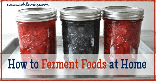 How to Ferment Fruits and Vegetables at Home - www.ohlardy.com