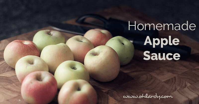 homemade applesauce - ohlardy.com