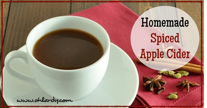 Homemade Spiced Apple Cider - www.ohlardy.com