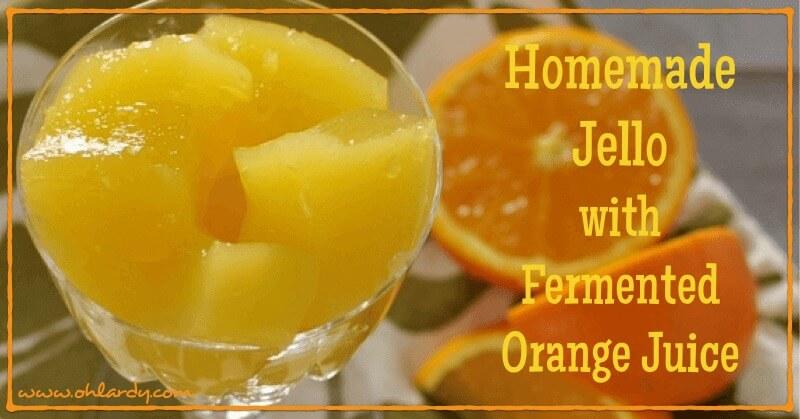 Homemade Jello with Fermented Orange Juice - www.ohlardy.com