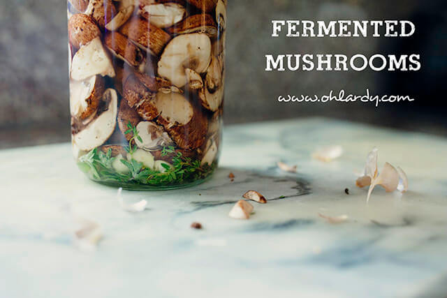 fermentedmushrooms1