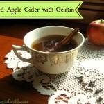 Mulled Apple Cider with Gelatin - www.ohlardy.com