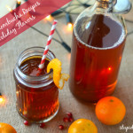 Holiday Kombucha Recipes - www.ohlardy.com