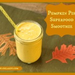 Pumpkin Pie Smoothie with Superfoods - www.ohlardy.com