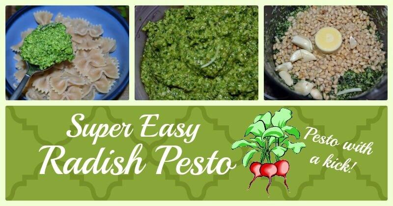 Spicy Radish Pesto - www.ohlardy.com