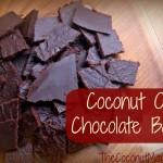 Coconut Oil Chocolate Bar - www.ohlardy.com