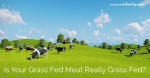 Is your grass fed meat really grass fed?