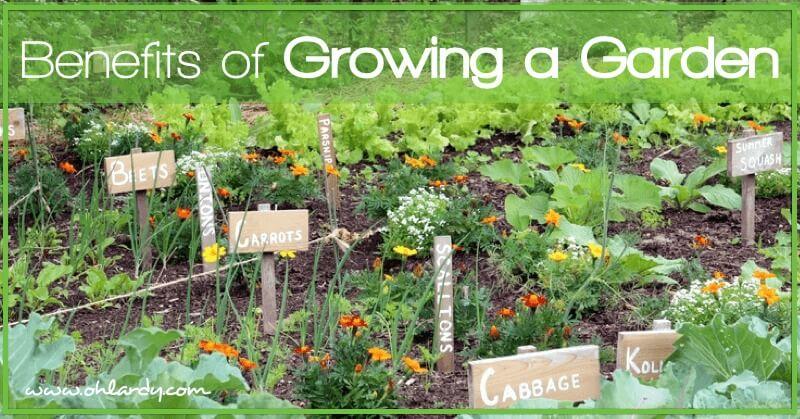 10 Benefits of Growing a Garden - www.ohlardy.com