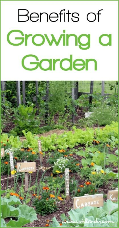 10 Benefits of Growing a Garden - www.ohlardy.com