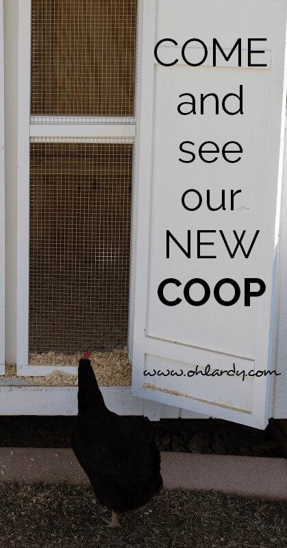 new coop - ohlardy.com