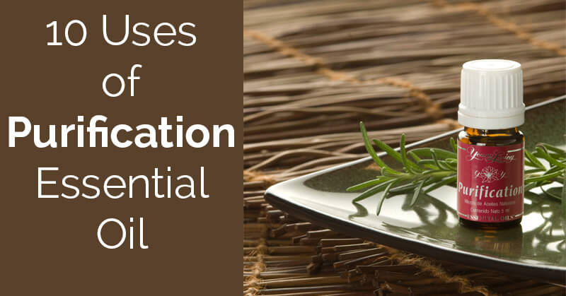 10 uses for purification essential oil - ohlardy.com