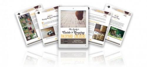 Oh Lardy's Guide to Keeping Backyard Chickens - www.ohlardy.com