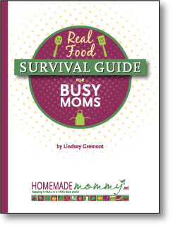 Homemade Mommy Real Food Survival Guide for Busy Moms - www.ohlardy.com