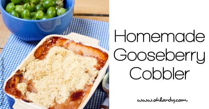 Homemade Gooseberry Cobbler - www.ohlardy.com