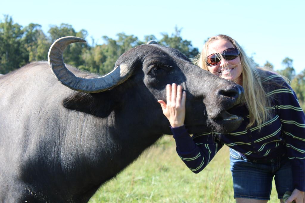 Shalley, The Buffalo Gal - ohlardy.com