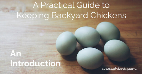A Practical Guide to Keeping backyard chickens, an intro - ohlardy.com