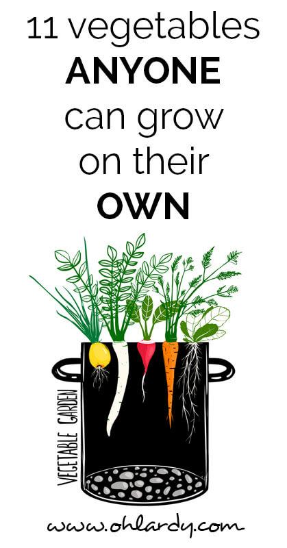 11 vegetables anyone can grow - ohlardy.com