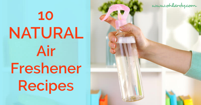 Favorite Homemade Air Freshener Recipes