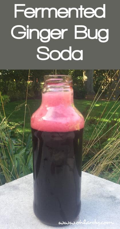 Fermented Ginger Bug Soda Recipe - www.ohlardy.com