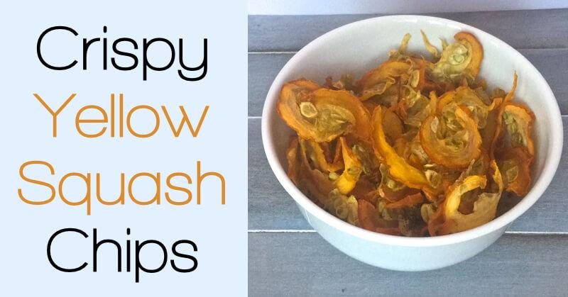 Crispy Yellow Squash Chips - www.ohlardy.com