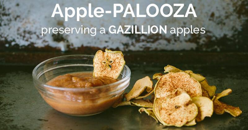 applepalooza - ohlardy.com