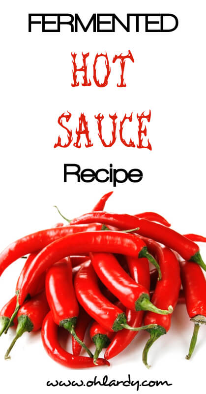 Fermented Hot Sauce Recipe - www.ohlardy.com