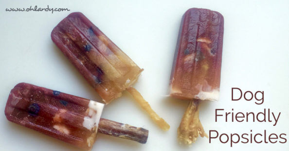 Dog Friendly Popsicles - Nourishing Ingredients