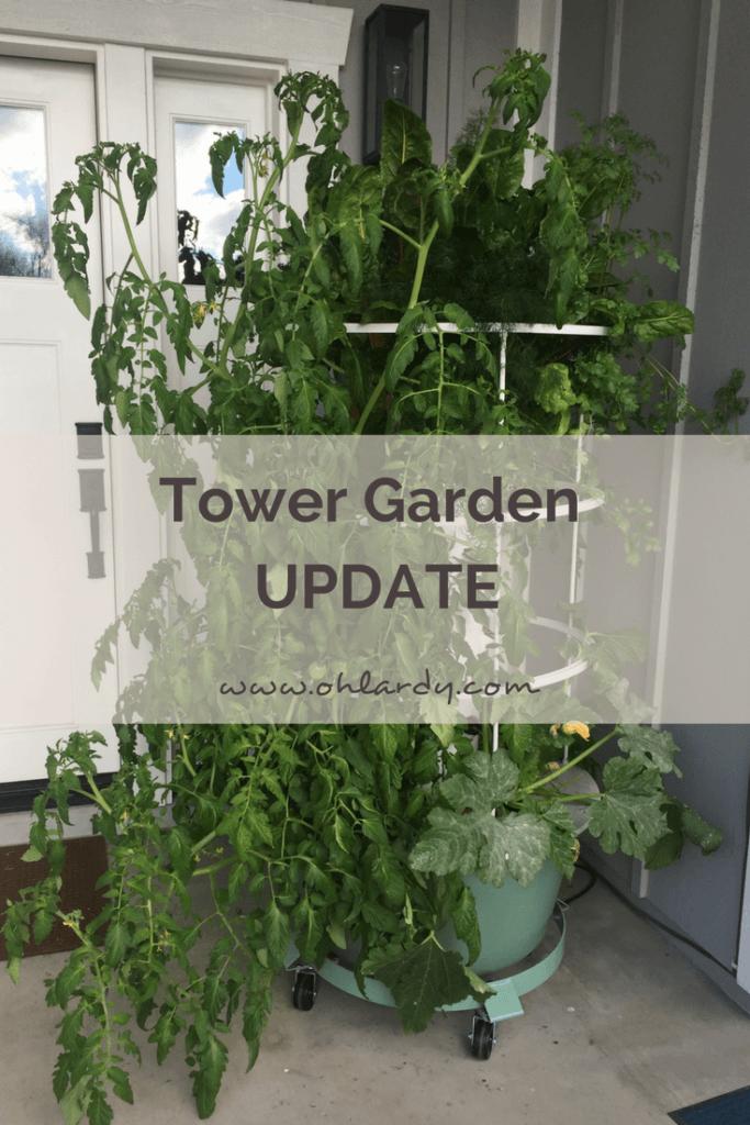 Tower Garden UPDATE - it has been 3 months!